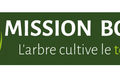 Mission Bocage recrute un technicien agroforestier