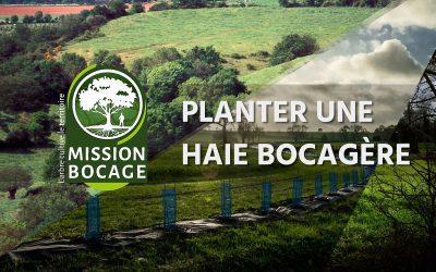 Lancement d'une vidéo sur la plantation de haie