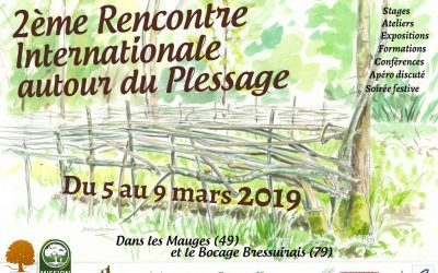 2ème Rencontre internationale du plessage du 5 au 9 mars 2019